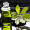 Лечение в удовольствие! Какие эфирные масла выбрать, чтобы устранить растяжки на коже?