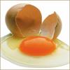 Состав куриного яйца: в чем и какая польза для человека