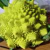 Еда с другой планеты: самые необычные гибриды фруктов и овощей на вашем столе