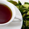 Чайная церемония: законы действа