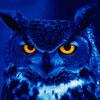 Правда о «совах»: нарушение сна или вредная привычка?