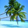 Где любит отдыхать Мадонна? Песчаное царство Карибов – выбор миллиардеров