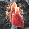 Заболело в груди? Не факт, что проблемы именно с сердцем!