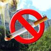 Лето-2011 пройдет под знаком борьбы с вредными привычками