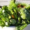 Употребление овощей поможет избежать проблем с кишечником