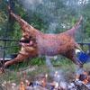 Как приготовить баранину, или За что принц Чарльз любит овечек