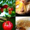 Экзотические фрукты: Чем полезны карамбола и личи?