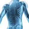Здоровые кости, или Как избежать дефицита кальция и витамина D?