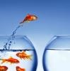 Естественное состояние человека, или Как развить уверенность в себе?