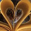 Эмоции зашкаливают: Книги о кошках от писателей, полюбивших котиков всерьез