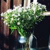 Как создать идеальный букет? 10 композиций с ароматом лета