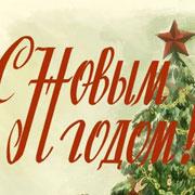 Россияне встретят Новый год 2016 дома и на дачах