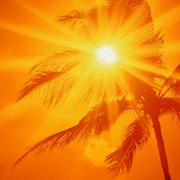 Чем больше солнце, тем лучше работает мозг