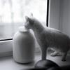 Пейте, дети, молоко – и давайте его взрослым! Молоко – лучшая альтернатива спортивным напиткам